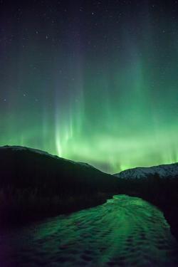 Northern Lights, Aurora Borealis, River by Lindsay Daniels