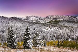 Snow and Fall Leaves in Utah by Lindsay Daniels