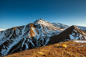 Yellow Tent High In The Mountains Of The Alaskan Range by Lindsay Daniels