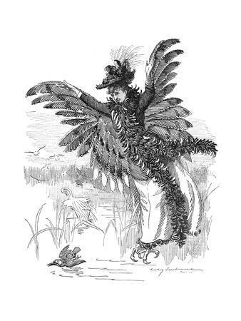 Bird of Prey - Harpy Fashion 1892