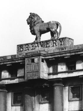 Lion Brewery Sign