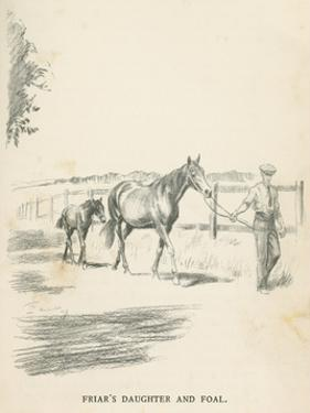 Friar's Daughter and Foal by Lionel Edwards