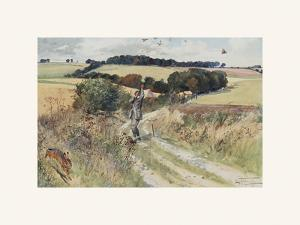 Partridge Shooting - September by Lionel Edwards