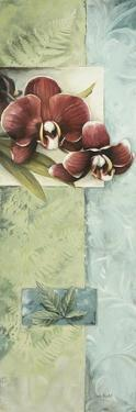 Full Orchid Duo 2 by Lisa Audit