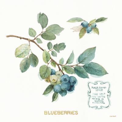 My Greenhouse Fruit II by Lisa Audit