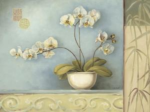 Orchid Spa 1 by Lisa Audit