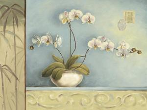 Orchid Spa 2 by Lisa Audit