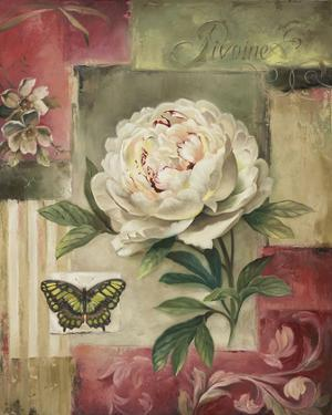 Peony and Butterfly by Lisa Audit