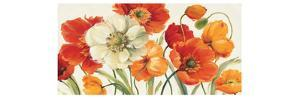 Poppies Melody I by Lisa Audit