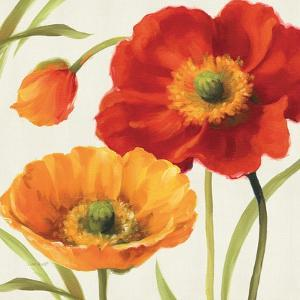 Poppies Melody III by Lisa Audit
