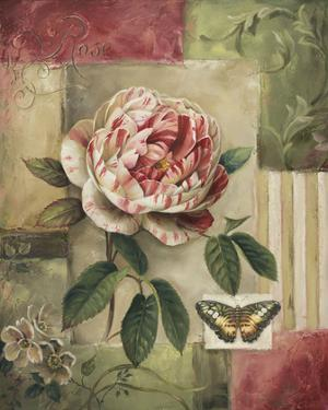 Rose and Butterfly by Lisa Audit
