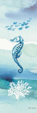 Sea Life VIII by Lisa Audit