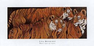 Three Ages of Tigers by LISA BENOUDIZ