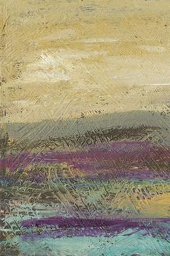 Desertscape I by Lisa Choate