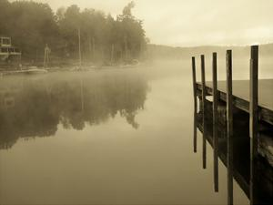 Stillness by Lisa Colberg