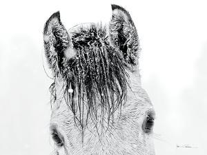 Snow Daze II Crop by Lisa Cueman