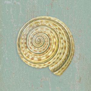 Sundial by Lisa Danielle