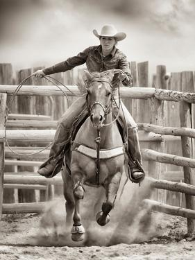Ride 'Em Cowgirl by Lisa Dearing