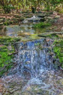 Waterfall on a creek by Lisa Engelbrecht