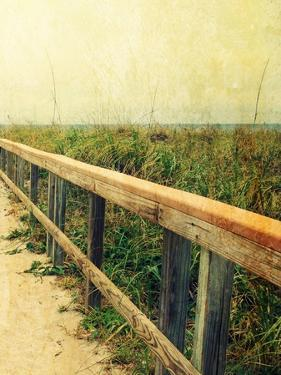 Beach Rails II by Lisa Hill Saghini