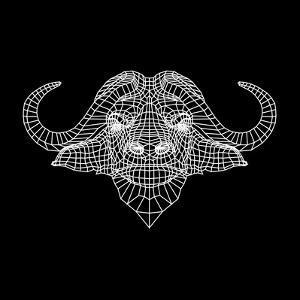 Black Buffalo Mesh by Lisa Kroll