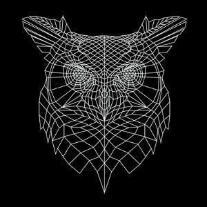 Black Owl Mesh by Lisa Kroll