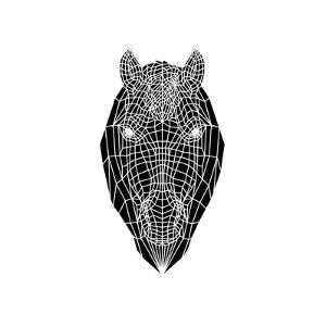 Horse Head Mesh by Lisa Kroll