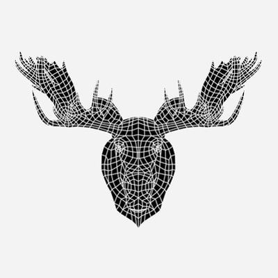 Moose Head Mesh by Lisa Kroll