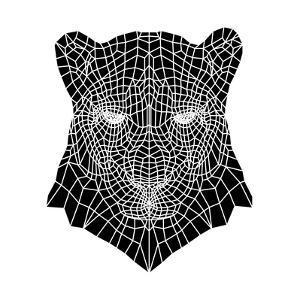 Panther Head Mesh by Lisa Kroll