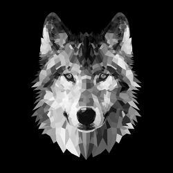 3595f89cfd8 Affordable Wolf (Decorative Art) Posters for sale at AllPosters.com