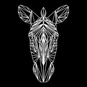 Zebra on Black by Lisa Kroll