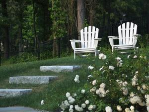 Adirondack Chairs, Marshfield, Massachusetts, USA by Lisa S. Engelbrecht