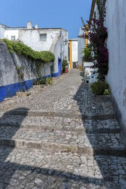 Europe, Portugal, Obidos, Cobblestone Street by Lisa S. Engelbrecht
