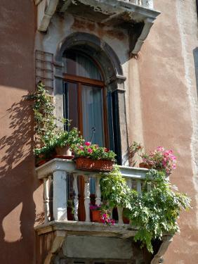 Flowers on Villa Balcony, Venice, Italy by Lisa S^ Engelbrecht