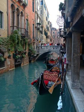 Gondolas along Canal, Venice, Italy by Lisa S. Engelbrecht