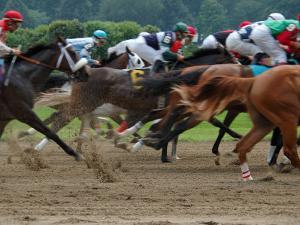 Race Horses in Action, Saratoga Springs, New York, USA by Lisa S^ Engelbrecht