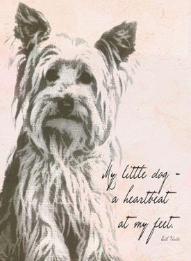 My Little Dog by Lisa Weedn