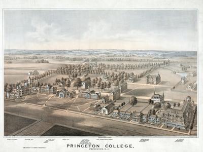 Lithograph of Princeton College