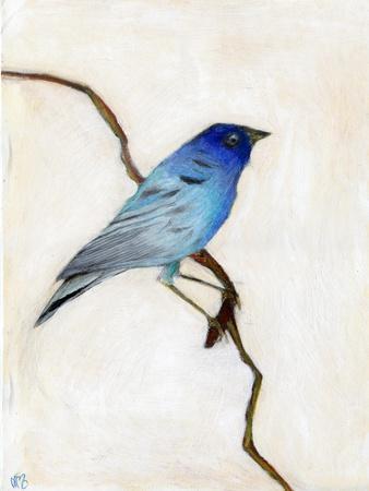 https://imgc.allpostersimages.com/img/posters/little-blue-2012_u-L-Q1GTWHE0.jpg?artPerspective=n