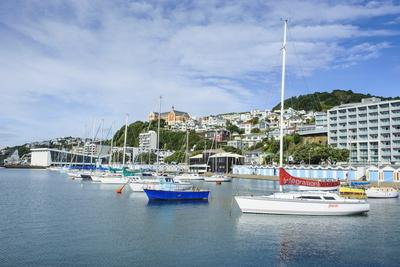 https://imgc.allpostersimages.com/img/posters/little-boats-in-the-harbour-of-wellington-north-island-new-zealand-pacific_u-L-PQ8Q6N0.jpg?p=0