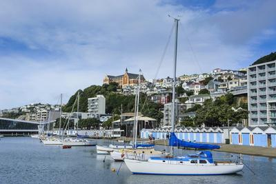 https://imgc.allpostersimages.com/img/posters/little-boats-in-the-harbour-of-wellington-north-island-new-zealand-pacific_u-L-PQ8Q6Z0.jpg?p=0
