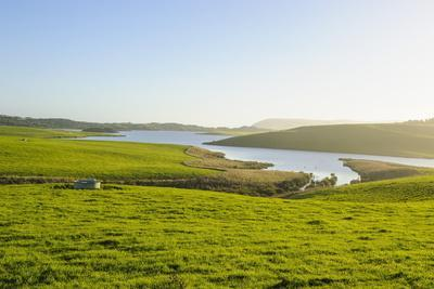 https://imgc.allpostersimages.com/img/posters/little-lake-in-green-fields-the-catlins-south-island-new-zealand-pacific_u-L-PQ8SXB0.jpg?p=0