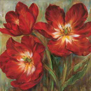 Flamenco Reds by Liv Carson