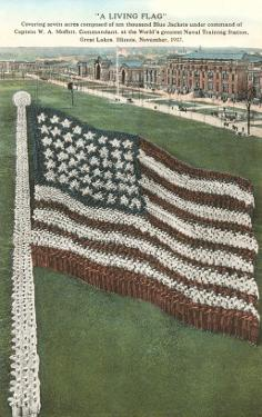 Living Flag at Naval Training Station, Illinois