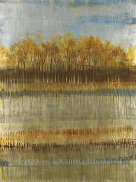 Beach Trees by Liz Jardine
