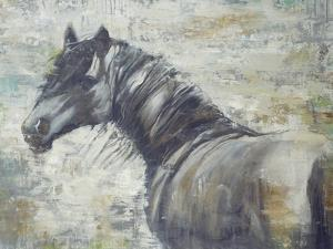 On the Wind by Liz Jardine