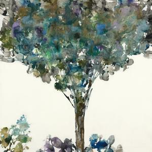 Shadowplay by Liz Jardine