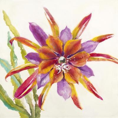 Sheer Beauty VII by Liz Jardine