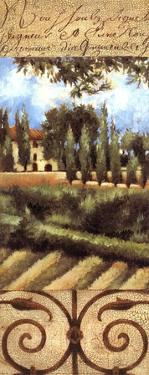 Villa In Tuscany by Liz Jardine