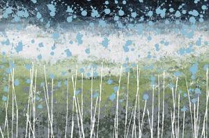 Aqua Splash by Liz Nichtberger